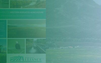 2020 Accomplishments & Activities Report
